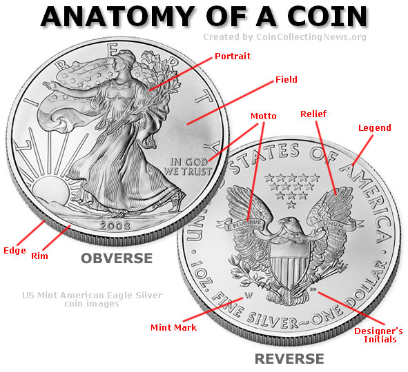 The Anatomy of a Coin